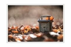 2 automne